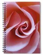 Vivacious Pink Rose 3 Spiral Notebook