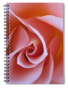 Vivacious Pink Rose Spiral Notebook