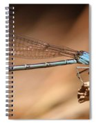 Vivid Dancer Damsel Spiral Notebook