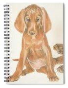 Vizsla Puppies Spiral Notebook