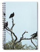 Vulture Club Spiral Notebook
