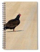 Vulture Road Spiral Notebook