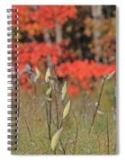 Wachusett Meadows 4 Spiral Notebook
