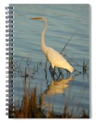 Wading The Pond Spiral Notebook