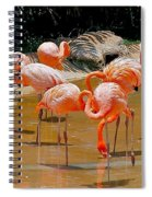 Waikiki Flamingos Spiral Notebook