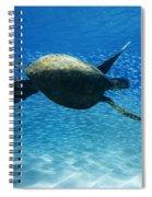 Waimea Turtle Spiral Notebook
