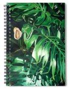 Waipeo Green Spiral Notebook