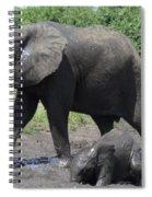 Wait Mom Spiral Notebook