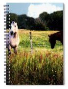 Waiting For Apples Spiral Notebook