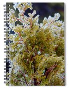 Waiting For Spring - Ice Storm - Closeup Spiral Notebook