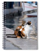 Waiting On The Pier Spiral Notebook