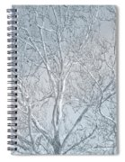 Waiting To Be Clothed Spiral Notebook