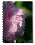 Wake Up Pink Peony Spiral Notebook