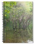 Walden Pond Spiral Notebook