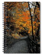 Walk In Golden Fall Spiral Notebook