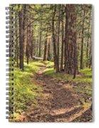 Walk In The Woods Spiral Notebook