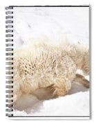 Walk The Right Path Spiral Notebook