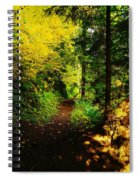 Walking An Autumn Path Spiral Notebook