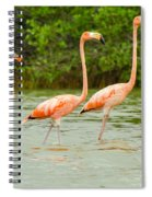 Walking Flamingos Spiral Notebook