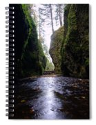 Walking In The Gorge Spiral Notebook
