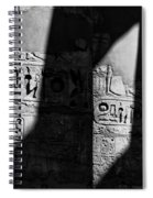 Walking In The Steps Of The Gods.. Spiral Notebook