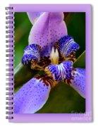 Walking Iris With Purple Border Spiral Notebook