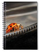 Walking On Edge Spiral Notebook