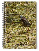 Walking On The Reeds Spiral Notebook