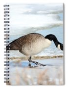 Walking On The Snow Spiral Notebook