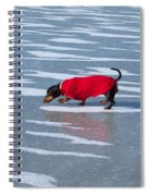 Walking On Water Spiral Notebook