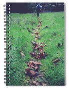 Walking The Path Less Traveled Spiral Notebook