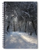 Walkway In Black And White Spiral Notebook