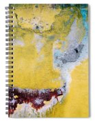 Wall Abstract 43 Spiral Notebook