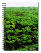Wall Of Ivy Spiral Notebook