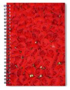 Wall Of Red Roses Spiral Notebook