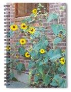 Wall Of Sunflowers 1 Spiral Notebook