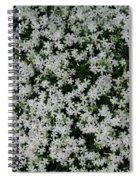 Wallflowers 2  Spiral Notebook