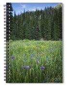 Wallowa Wildflowers Spiral Notebook