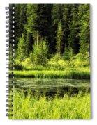 Wallowas - No. 9 Spiral Notebook