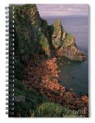 Walrus Haul-out, Alaska Spiral Notebook