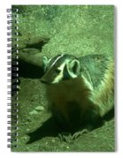 Wandering Badger Spiral Notebook