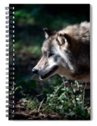 Wandering Wolf Spiral Notebook