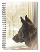 Wanting To Play Spiral Notebook