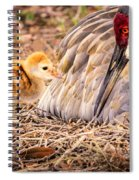 Wants Attention Spiral Notebook