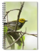 Warbler - Black-throated Green  Spiral Notebook