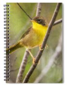 Warbler In Sunlight Spiral Notebook