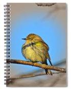 Warbler Spiral Notebook