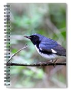 Warbler With Lunch Spiral Notebook