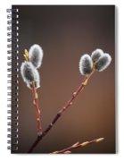 Warm And Fuzzy Spiral Notebook