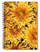 Warm And Sunny Yellows Golds And Oranges Spiral Notebook